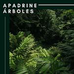APADRINE ÁRBOLES